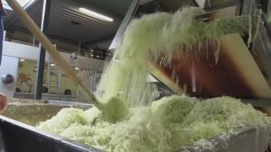 Sauerkraut The New Summer Superfood