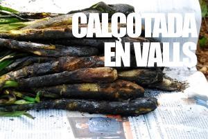 Calotada En Valls 1020051 By Dicestuqueno