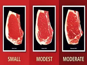 Marbling Certified Angus Beef
