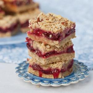 Festive Cranberry Dessert Squares