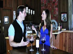 Napa Valley Wine Tasting At Hall Winery With Top Winemaker