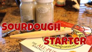 Feeding Sourdough Starters And A Chat 1019669 By Lindaspantry