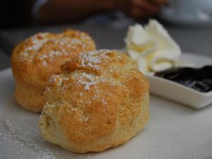 Best Baking Powder Biscuits