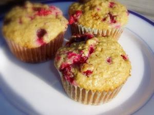 Cranberry Oat Bran Muffins