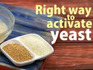 Right Way To Activate The Dry Yeast