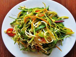 Asian Green Salad With Mango Dressing Recipe
