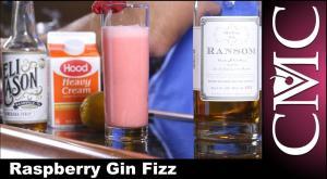 Raspberry Gin Fizz