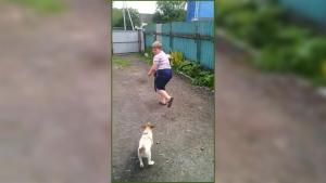 Boy Extremely Scared Of Little Puppy