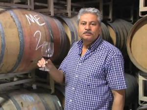In The Cellar with Armando Ceja 2008 Carneros Pinot Noir