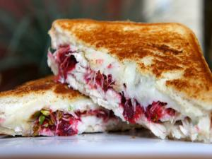 Turkey and Cranberry Melt