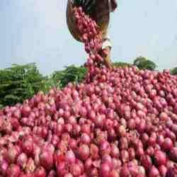 Red Onions can prevent heart disease
