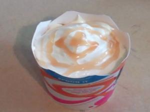 Homemade Caramel McFlurry Style