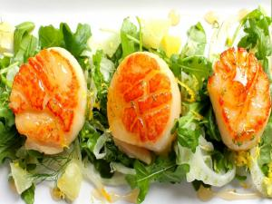 Pan Fried Scallops with Arugula, Fennel and Citrus Vinaigrette