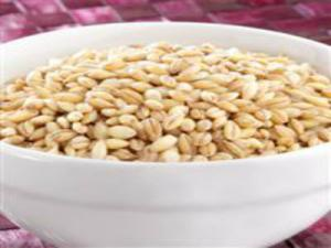 Cooking and Using Barley