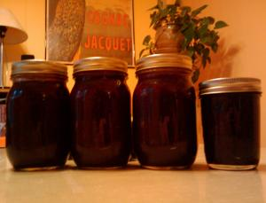 Jam Of Four Berries