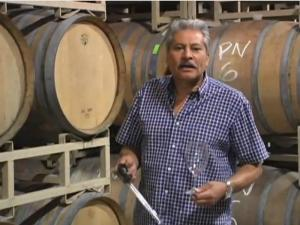 In The Cellar with Armando Ceja 2008 Carneros Merlot