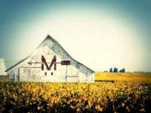 Cellar Angels Interviews Rocco Califano Of Mulvane Wine Company