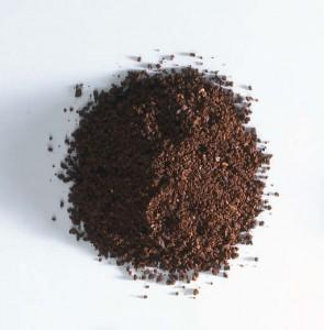 Uses and benefits chicory powder