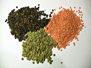 Lentils - Hints and Tips