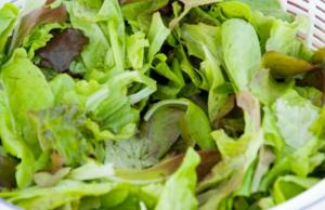 Salad with Sherry Vinaigrette and Candied Walnuts