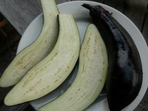 Eggplant is rich in nutrients