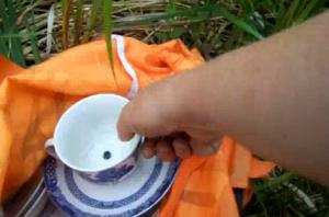 Fixing Tea Cup and Saucer on Bird Houses