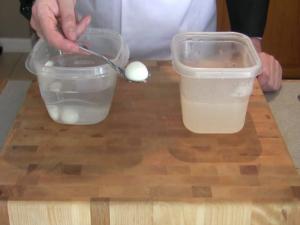 Modernist Gastronomy: Yogurt Ravioles