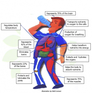 the health benefits of drinking water