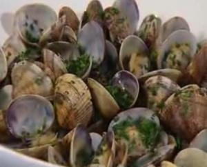 "Clams ""A How-To Guide"""