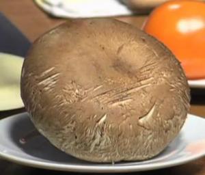 Portabello Mushroom Panini