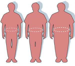 waist circumference determines obesity