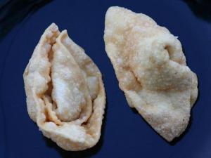 Fava Bean and Jalapeno Wontons
