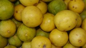 Lemon odor