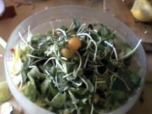 Healthy Low-Fat Salad Recipe, Ep52