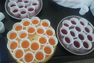 Party Time Jello Shots