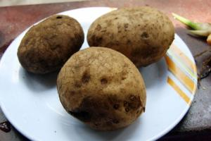 All You Want To Know : POTATO