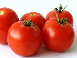 Seasons - Tomato
