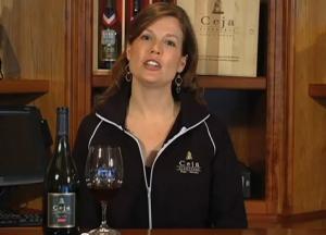 Vineyards Wine Club Tour