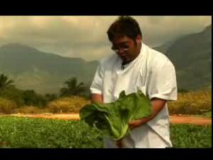 Review Of Owen Kaneshiro Farm