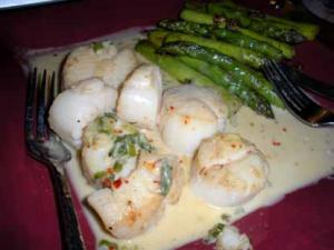 Creamed Scallops