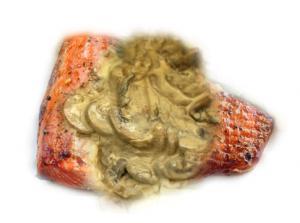 Seafood Stroganoff