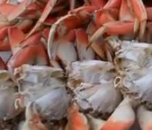 Easy Steamed Crabs