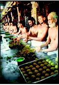 Patent for 'Tirupati Laddu'