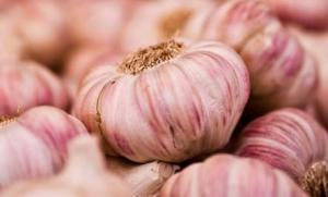 Garlic is good for a healthy heart