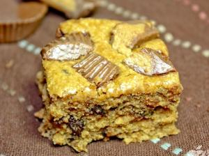 Peanut Butter Jelly Swirl Blondies