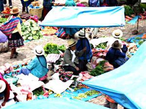 A Peruvian Market and Shaman Shop Tour