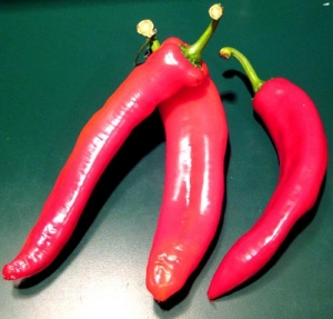 These Things You Can Do With Chili Peppers