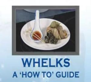 How to Eat Whelks
