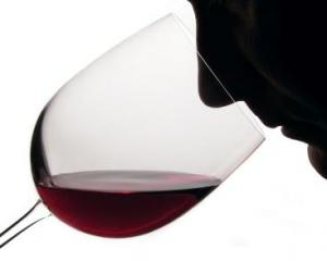 The Wine Tasting Festival, India was organized on 12th December 2010 by the Pune Gourmet Club.