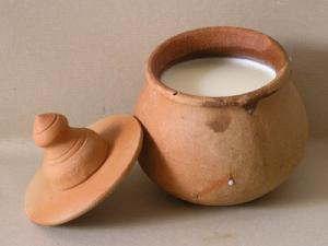 Secret of making homemade Yogurt or curd successfully